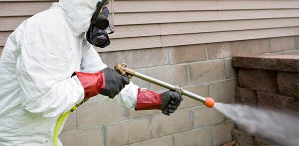 The best repellents are Talstar P, Cyper TC or Permethrin 36 %. They are useful for outdoor spraying.