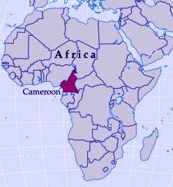 58 best Cameroon, Africa (Food & Culture) images on Pinterest