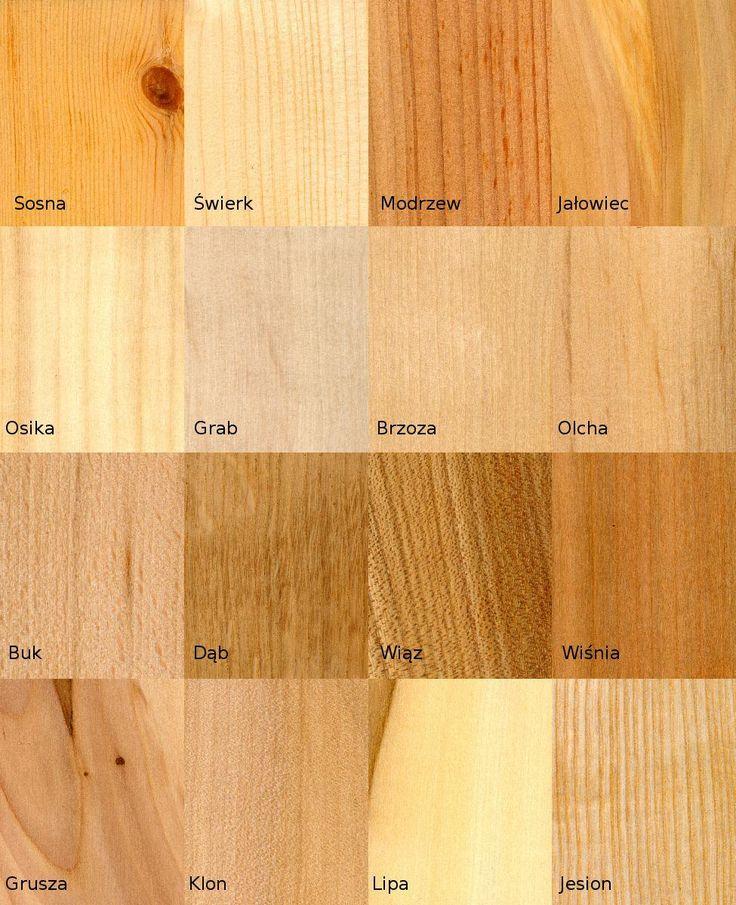 https://commons.wikimedia.org/wiki/File:16_wood_samples.jpg - spolszczone