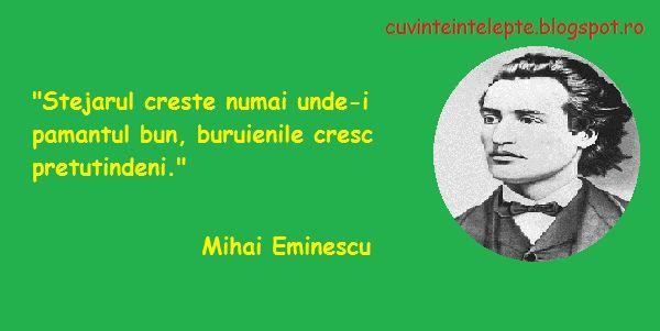 """""""Stejarul creste numai unde-i pamantul bun, buruienile cresc pretutindeni.""""  Mihai Eminescu"""