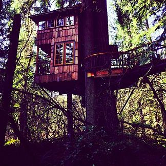 Treehouse Point in Fall City, Washington   16 Hotels That Are So Cool You'll Want To Stay Forever