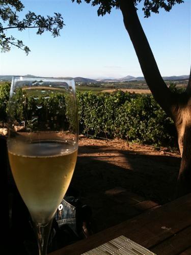 Haskell Vineyards - Stellenbosch, South Africa