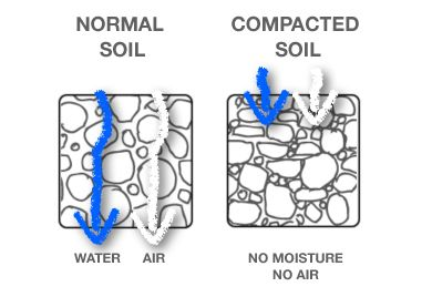 #SoilBasics covers bulk density, a measure of soil compaction, which a huge problem with urban soil. Join us on #Groundchat Fri, May 2, 2014 at 2 pm EST