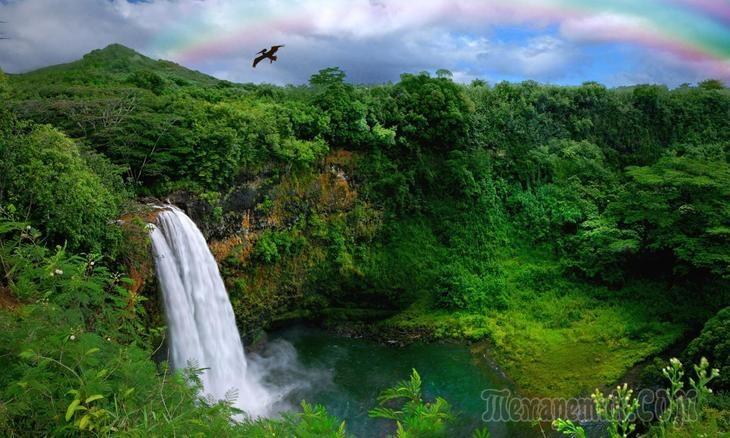 Водопады острова Кауаи. Гавайи, США. Waterfalls of Kauai island. Hawaii, USA.