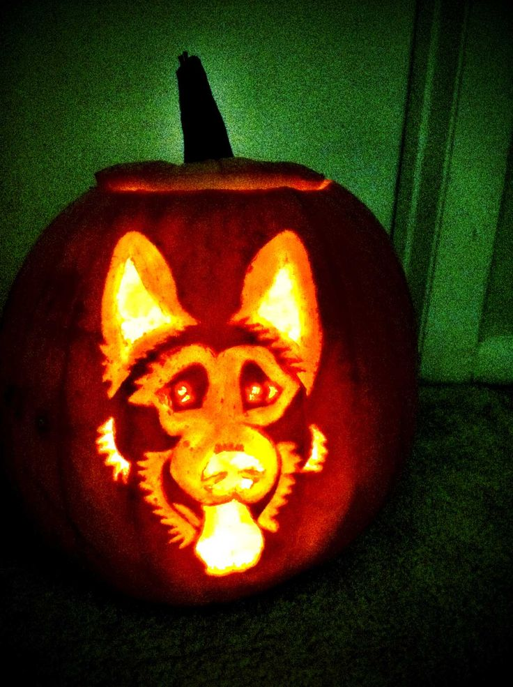 German shepard pumpkin carving halloween fun pinterest