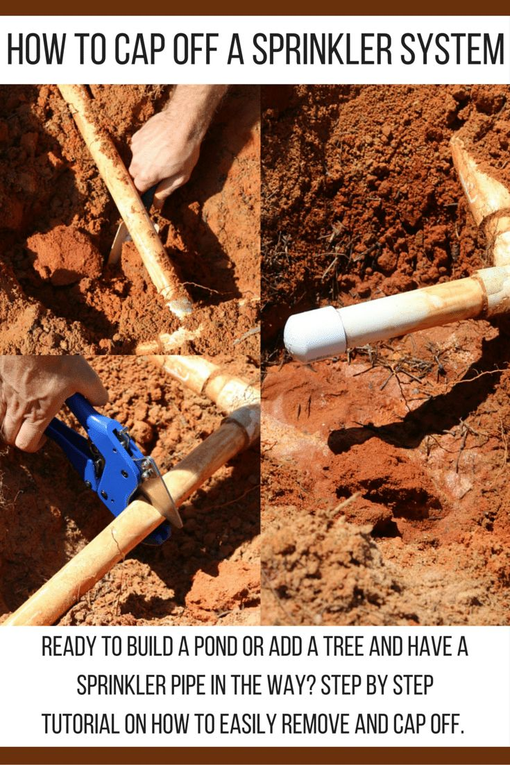 How to cap off a Sprinkler head and remove the PVC pipe from the area, DIY