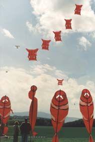 eric aouara cerf volant drachen kite cometa