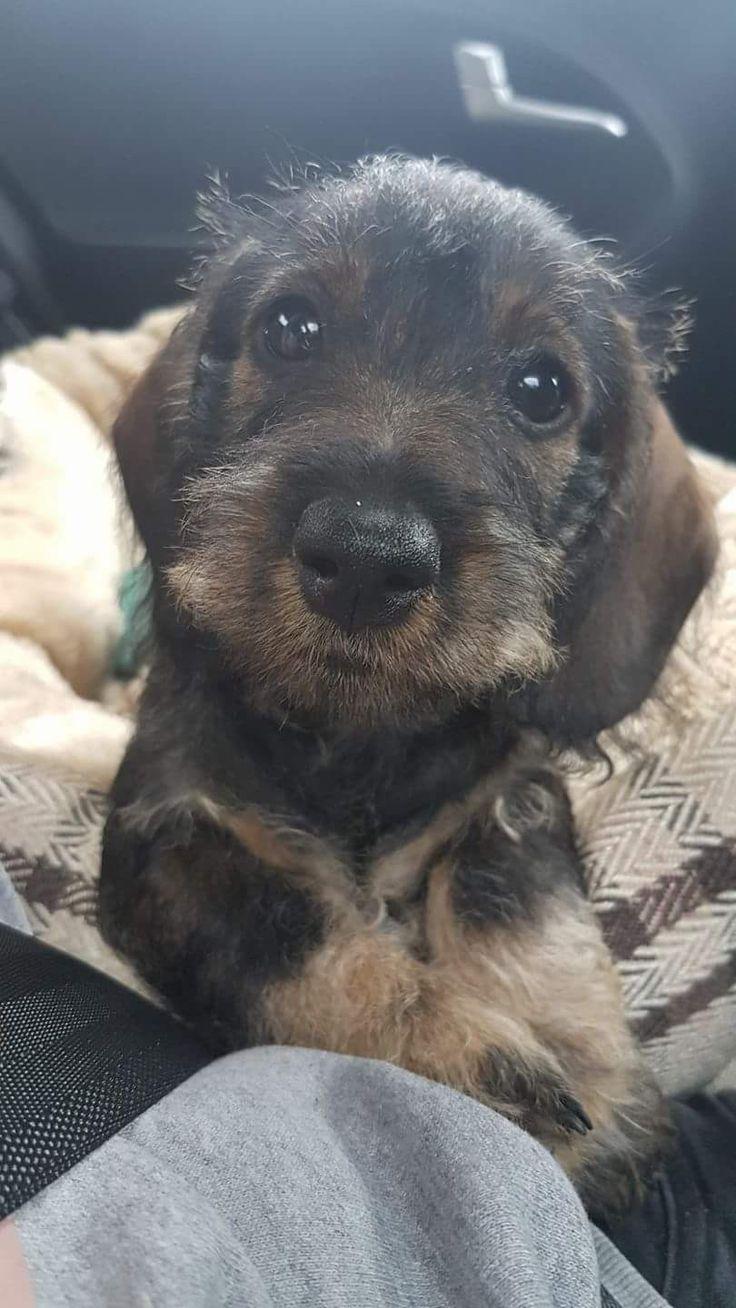 Sweet little face...