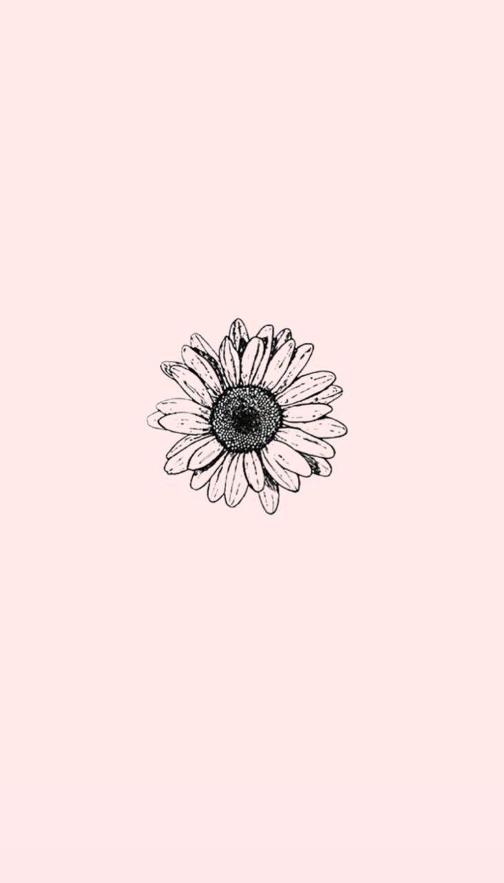 Pin By Maria Elisa On Destaques Instagram Aesthetic Iphone Wallpaper Tumblr Wallpaper Backgrounds Phone Wallpapers
