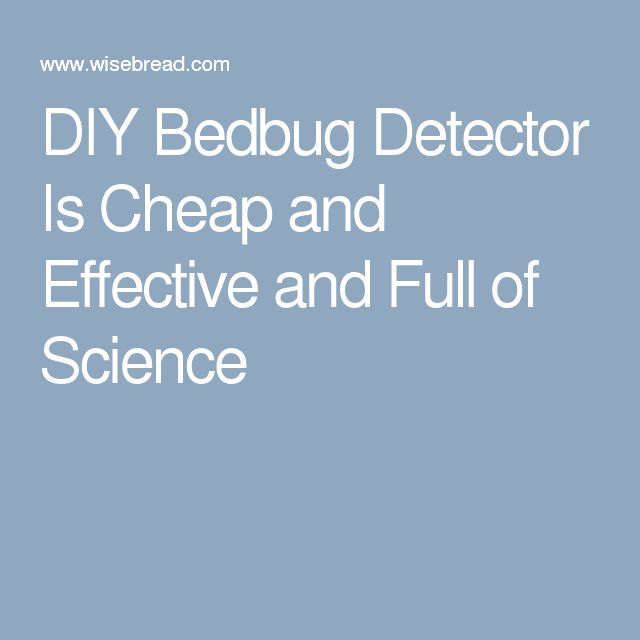 DIY Bedbug Detector Is Cheap And Effective And Full Of