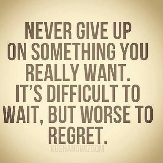 Never Give Up Quotes 7 Best Never Give Up Images On Pinterest  Inspire Quotes Never