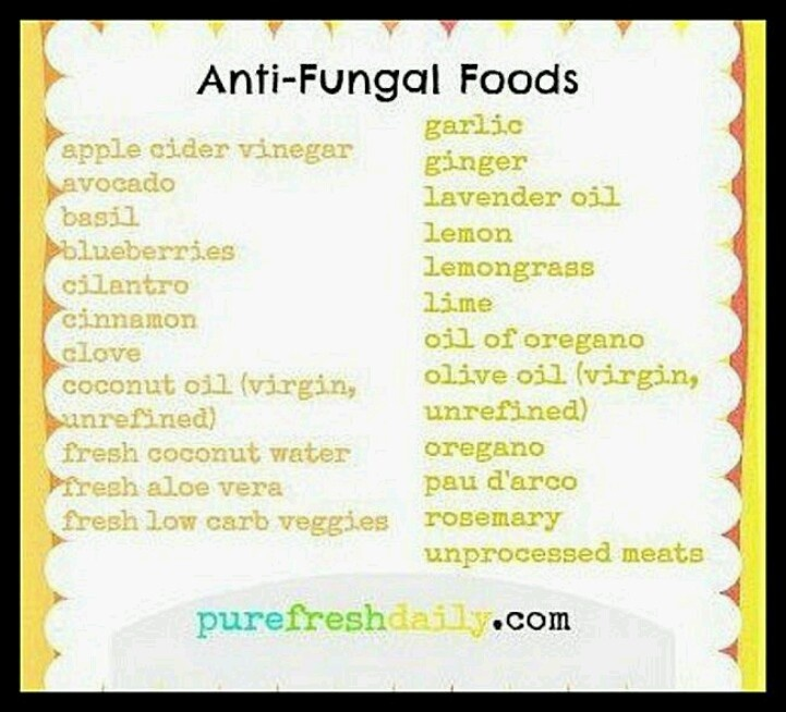 Candida Diet Food List Recipes