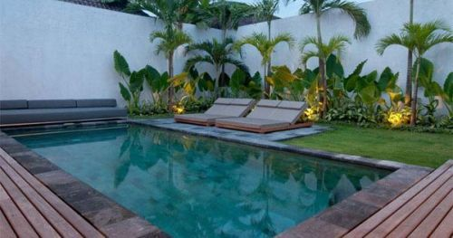 Just Pinned To Pool Tropical Plants Around