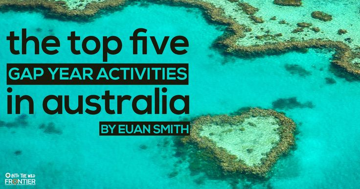The Top 5 Gap Year Activities In Australia | blog.frontiergap.com | www.frontiergap.com | #australia #gapyear #traveladvice #GetOutThere #seetheworld #gapyearadvice #rainforest #wildlife