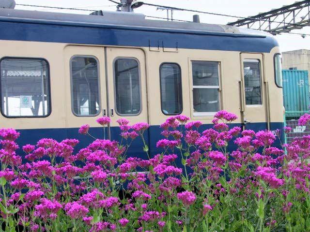 115系 竜王駅 2001年5月撮影 中央東線のスカ色115系は数が少なくなったものの未だ健在です。この頃はこの列車に乗って竜王にある温泉へ頻繁に出掛けていました。