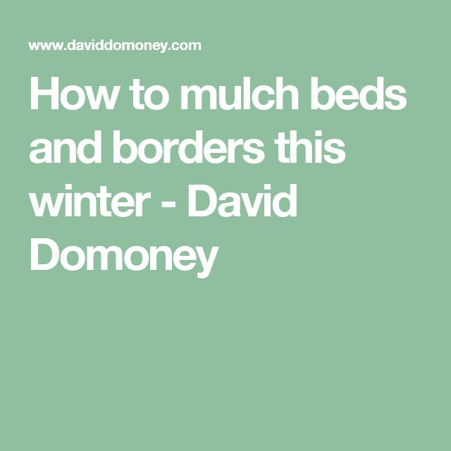 How to mulch beds and borders this winter - David Domoney