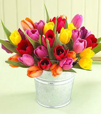Arreglo de 40 tulipanes