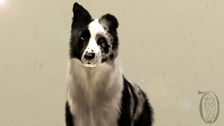 Dogs on The-Sims-3-Pets - DeviantArt
