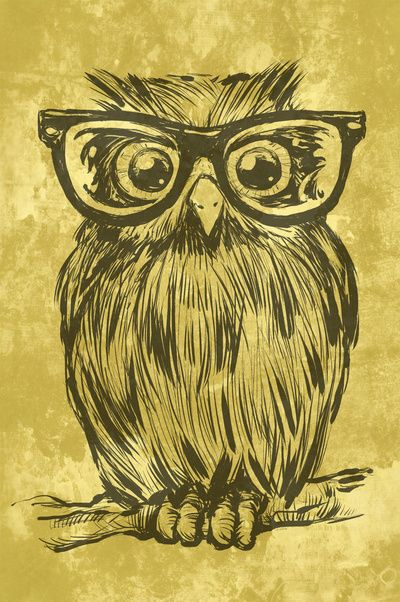 Spectacle Owl Art Print, want him without his glasses for my little owl on a branch
