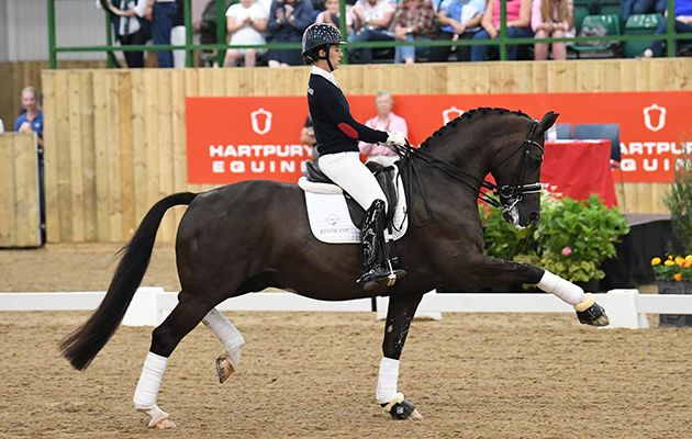 Take a whistle-stop tour of Valegro's career in 46 minutes https://trib.al/hyEFMvp