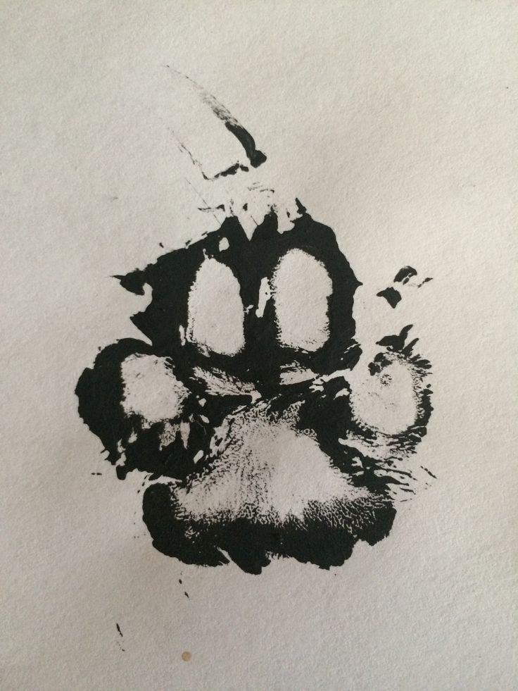 Real Paw print using paint of my dogs Mitzi's foot ! sweet idea for a tattoo over my heart #DogTattooIdeas