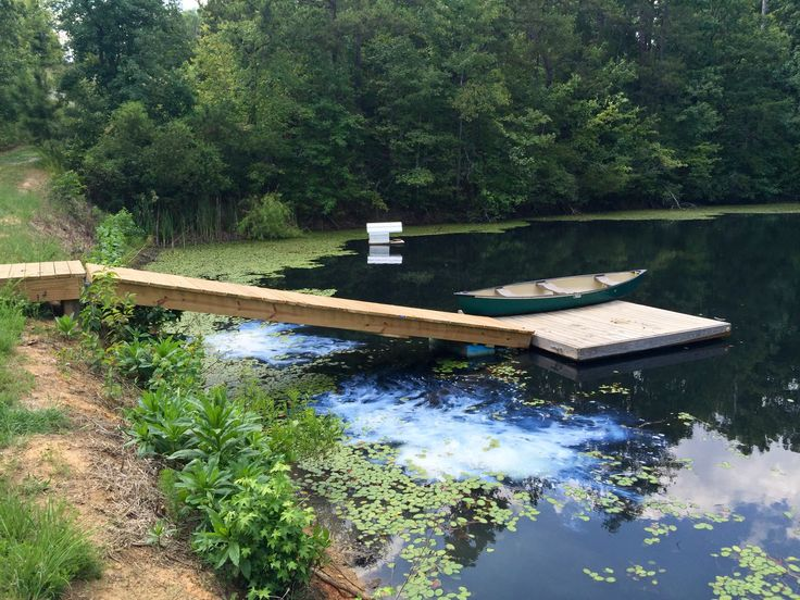 55 best call 704 816 0526 lake management charlotte nc for Fish pond management