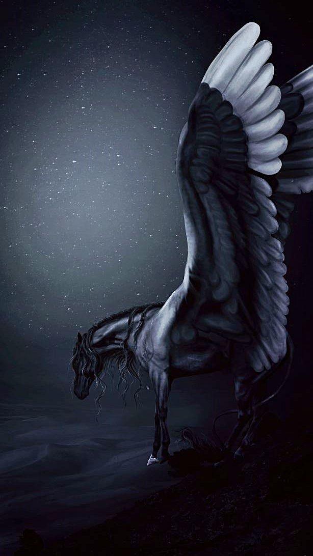 Black and white pegasus