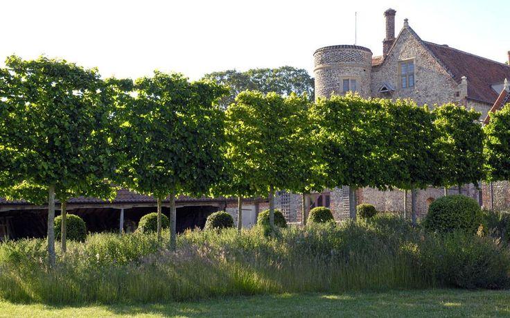 A garden in Norfolk - Arne Maynard Garden Design