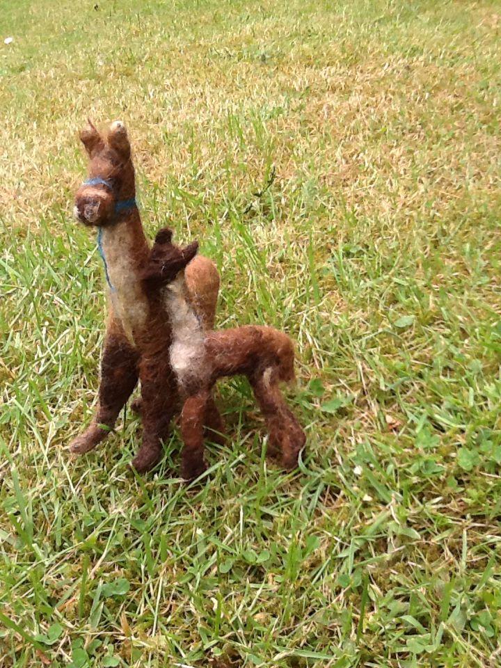 Lama's van Lama-wol moeder en kind