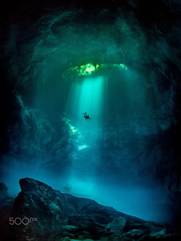 """""""The Pit is an incredible dive site in Tulum Mexico. A fresh water sinkhole with unlimited visibility a hydrogen sulfide layer (aka 'the cloud') and an 'island' of debris (with it's own tree which you can see in the picture)"""" says photographer Tom St George."""