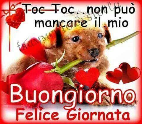 Toc toc buongiorno buongiorno pinterest for Messaggi di buongiorno divertenti