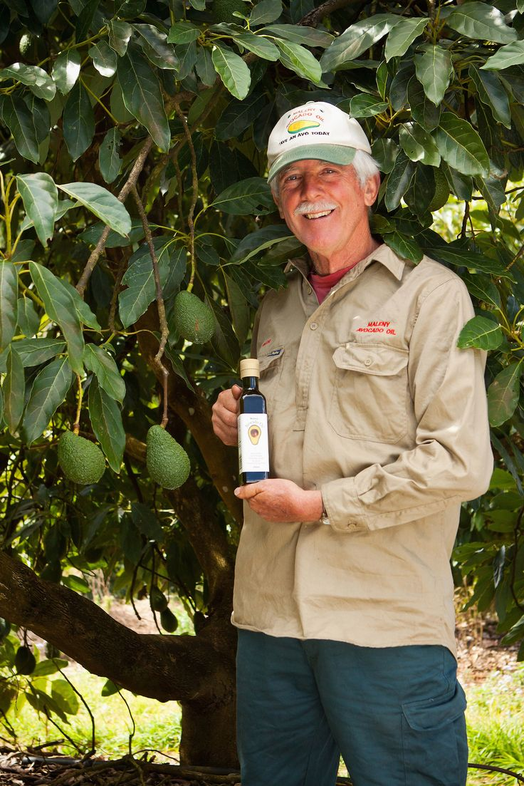 Bede McKenzie, founder of Maleny Avocado Oil.