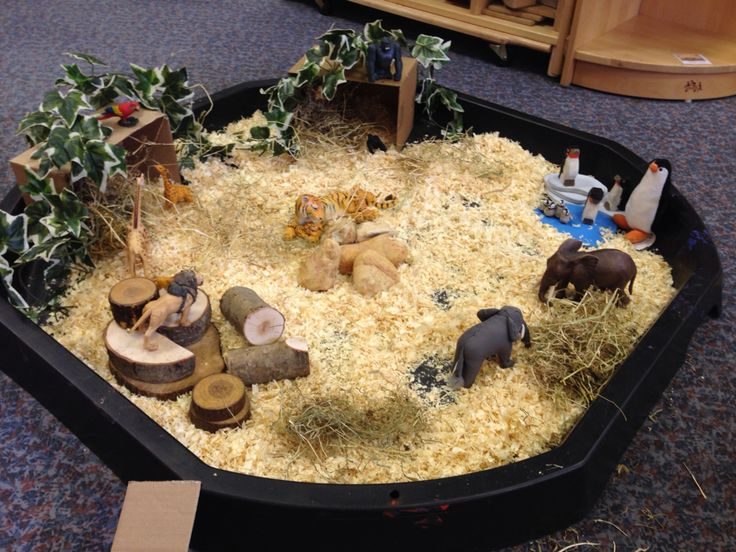BC Language Arts Oral Language Small world Zoo