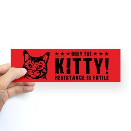 Obey the kitty bumper bumper sticker