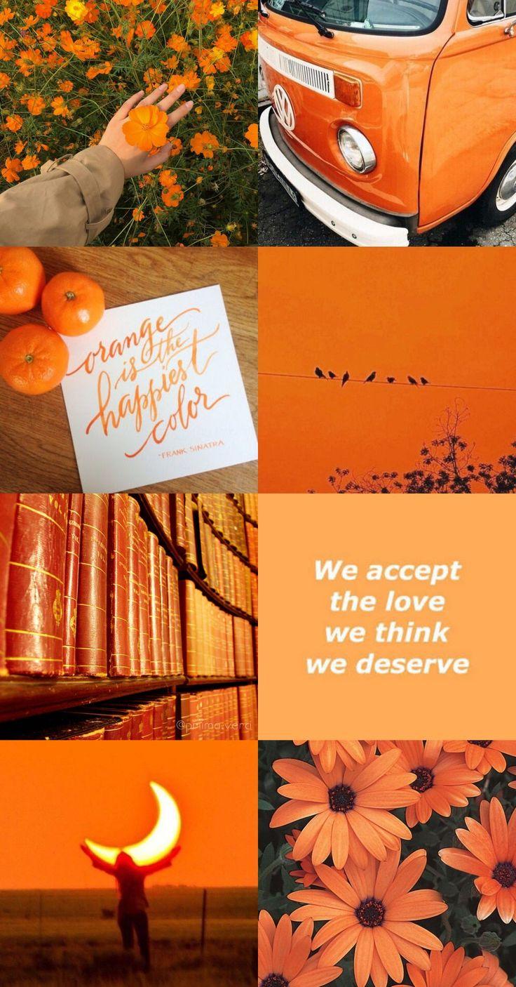 🔸️🔶️ orange aesthetic 📙🌺🔶️🔸️ 🔸️🔶️ orange aesthetic 📙🌺🔶️🔸️