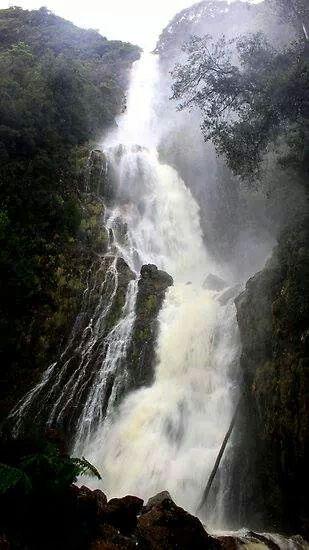 Montezuma Falls West Coast Tasmania