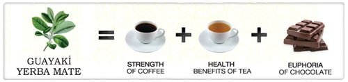 """Yerba Mate: the strength of coffee, the health benefits of tea, and the euphoria of chocolate"""" all in one beverage."""