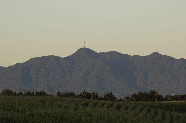 Mt Te Aroha, NZ over a maize field. (Photography by CaseyG)