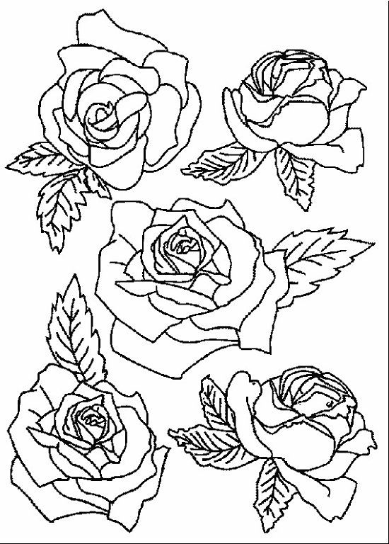 1644 best Adult coloring pages images on Pinterest | Coloring books ...