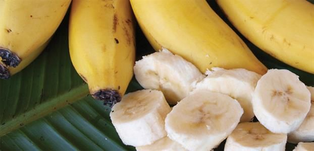 Bananas These varieties will happily fruit in southern gardens as well as the traditional banana growing climates. Plant a few together to form an ornamental screen. Bananas need protection from strong winds and frost.