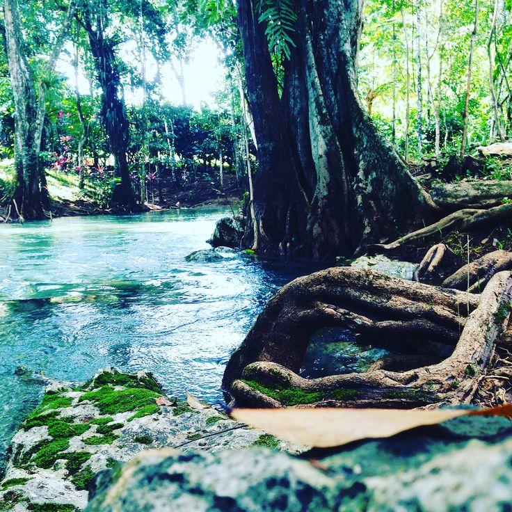 Los placeres de la naturaleza. Chisec, A. V., Guatemala.