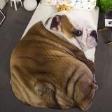 FREE Express Shipping Cartoon Summer Quilt Blankets Dog Cat Animal Bed – outdoorman.ca