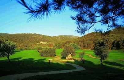 Golf en Mallorca | Mejores campos de golf en Mallorca | Mallorca Label