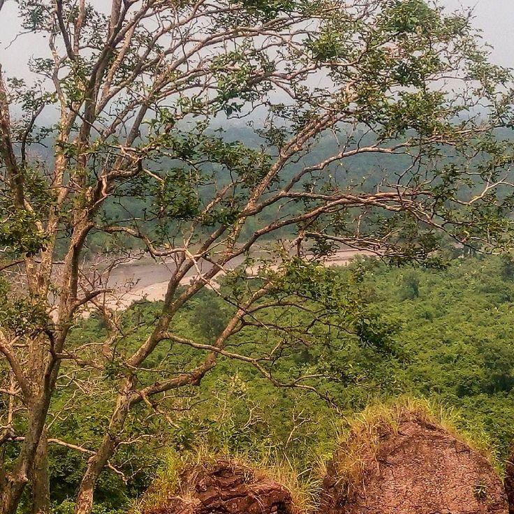 Palamu fort #incredibleindia