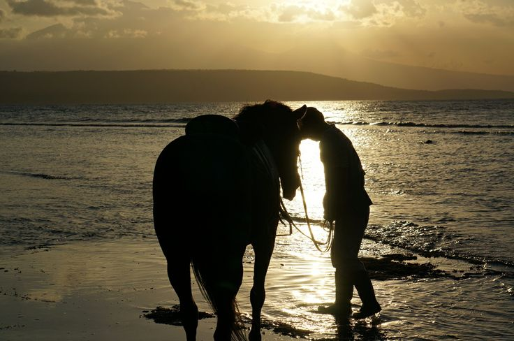 Sunset horse ride to the beach..