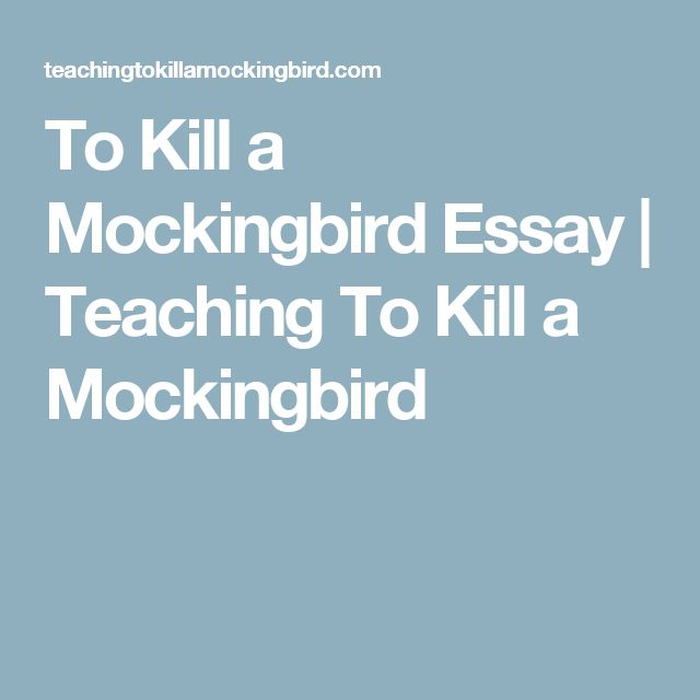 Student essay to kill a mockingbird