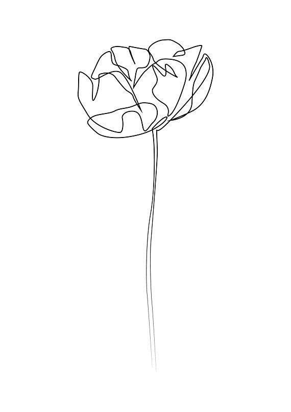 Minimale Pfingstrosen blühen Kunst, eine Linie Kunst, moderne Kunst, Schwarzweiss-Kunst, weißer Hintergrund – Art.Pinindec