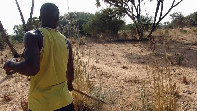 Des associations environnementales africaines proposent des solutions pour agir contre le réchauffement climatique.