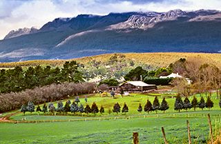 The magnificent mountain of Ben Lomond is dominated by an alpine plateau over 1500 metres high... Because of the decreasing area of natural habitat available in north-eastern Tasmania, the national park plays an invaluable role in regional wildlife conservation.
