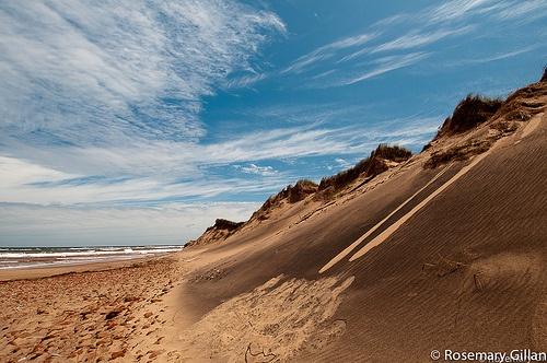 The Sand dunes in PEI